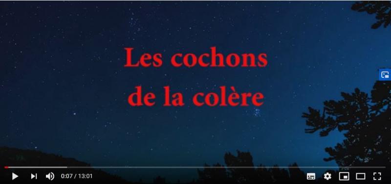 Video les cochons de la colère - Confédération Paysanne Ariège